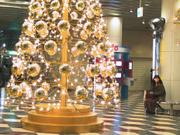 Christmas Tree, Solaria Plaza, Fukuoka, Japan, photo