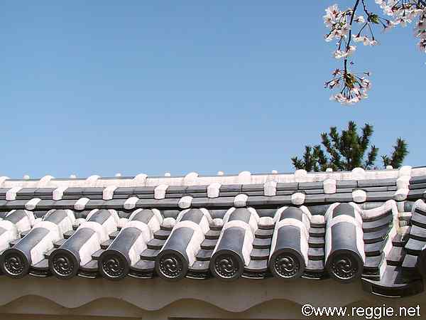 Cherry blossoms above roof, Matsuyama Castle, Ehime-ken, Japan, photo