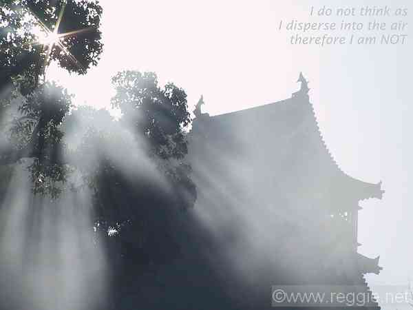 Smoke from leaves, Kumamoto castle, Kumamoto, Japan, photo