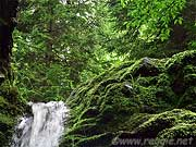 Dickson Falls, Fundy National Park, New Brunswick, Canada, photo