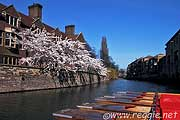 The River Cam, Magdalene College, Cambridge, England, photo