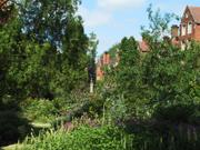 Gardens, Selwyn College, Cambridge, England, photo