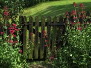 Flowers by St. Botolph\'s church gate, Hadstock, Essex, England, photo