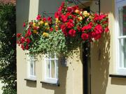 Hanging baskets, Kersey, Suffolk, England, photo