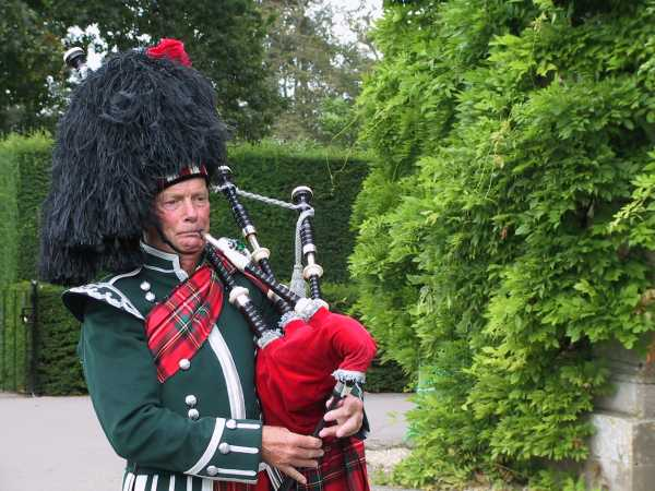 The piper, photo