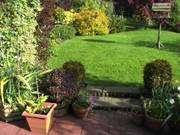 Lawn, bird table and patio, Parents\' garden, Lisburn, N. Ireland, photo