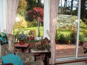 Mum\'s chair, conservatory, Parents\' garden, Lisburn, N. Ireland, photo
