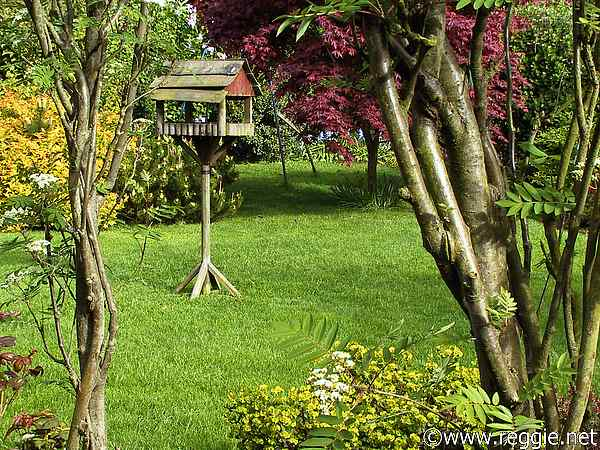 Bird table, Parents\' garden, Lisburn, N. Ireland, photo
