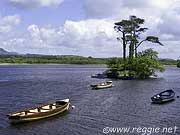 Lough Gill and boats, Co. Sligo, Irelandの写真