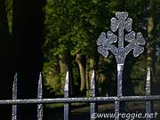 Shamrock on St Annes Church railings, Sligo, Ireland, photo