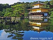 Tourist view of Kinkakuji, Kyoto, Japan, photo