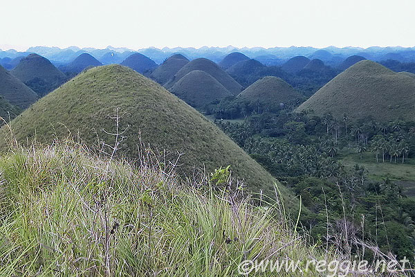 Chocolate Hills, Carmen, Bohol Island, the Philippines, photo
